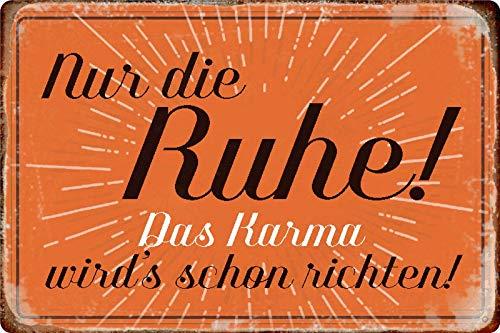 Blechschild Spruch Nur die Ruhe Das Karma richten Metallschild 20x30 tin Sign