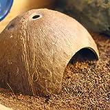 Yanhonin Acuario Decoración, Reptile Coco Natural Hidden Cave, Reptil Tortuga gambas casa