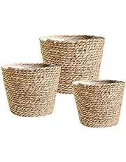 Elibeauty - Juego de 3 cestas para maceteros de pasto marino naturales, elegantes cestas para plantas de interior y exterior, perfectas para cubrir macetas y decoración de habitaciones (beige)
