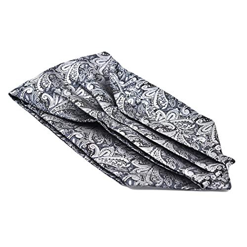 NIAM Mens Ascot Classic Floral Paisley Fashion Jacquard Cravat Tie Business Necktie