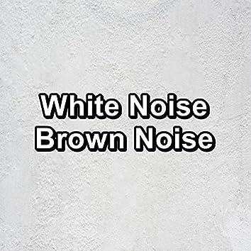 White Noise Brown Noise