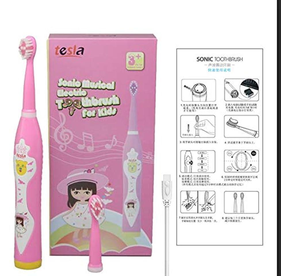 ホテルドライブより良い男の子と女の子用 自動歯ブラシ ソニック電動ブラシ タイマー オーラル 子供向け音楽 ipx7防水ボディ キッズミュージックソング (pink)