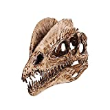 SAFGH Dinosaurio Dilophosaurus Calavera réplica Modelo de Esqueleto Adorno de Acuario decoración del hogar Escultura de Calavera 10X20x23cm