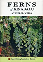 Ferns of Kinabalu: An Introduction