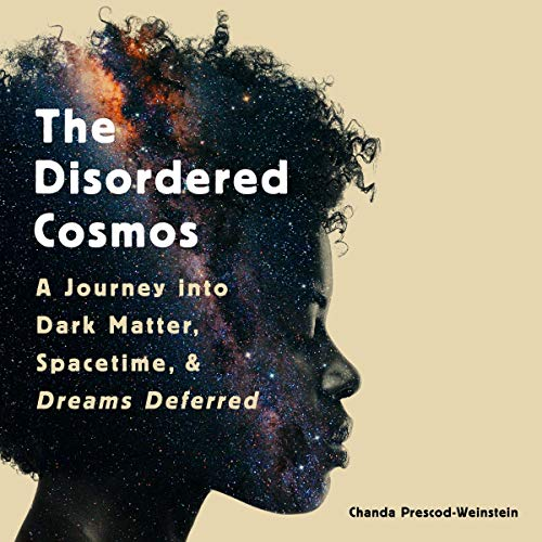 The Disordered Cosmos cover art