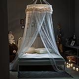 YiXing Red para cama con diseño de princesas para colgar en el hogar y el jardín, ideal para estudiantes, con mosquiteros, mosquiteros, color blanco