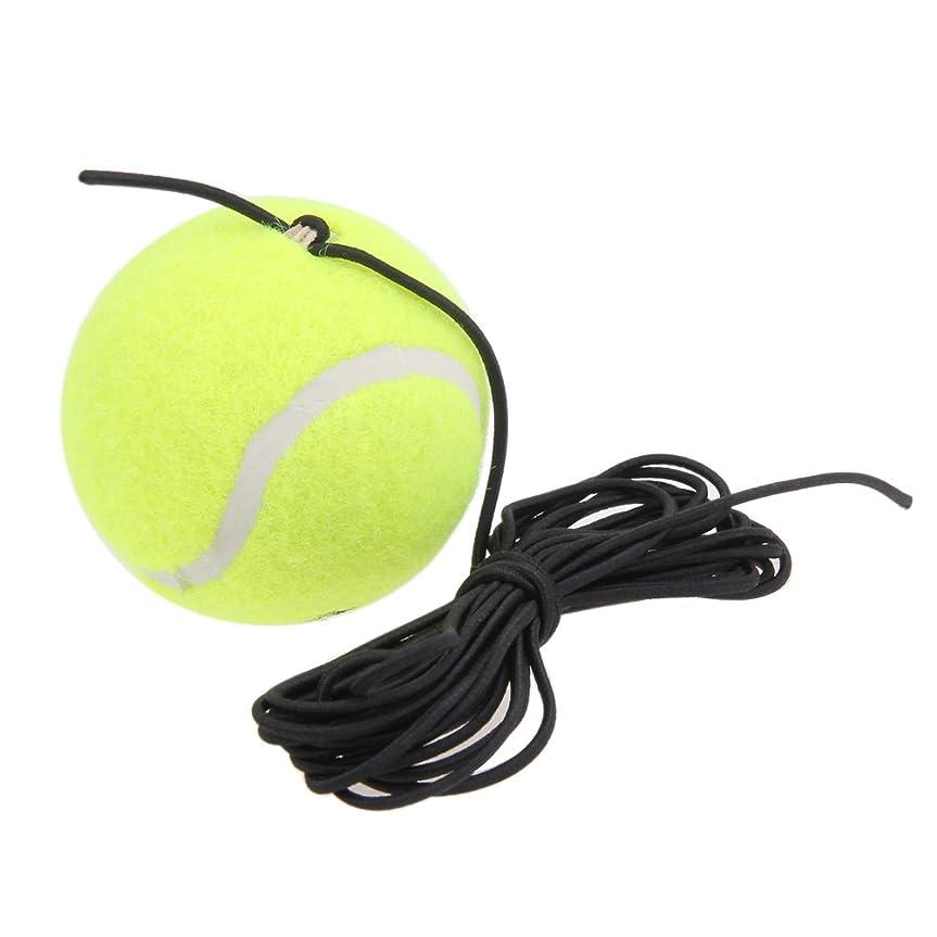 失速重大試みるSIKIWIND テニス練習ボール テニストレーナー 初心者 一人練習 天然ゴム製