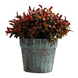 jinyi2016SHOP Plantas Artificiales Plantas Artificiales Mini Hierba en Maceta for la decoración de la Fiesta en casa de Interior Planta Falsa (Color : Red)