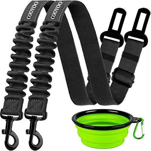Safest Dog Harness for Car