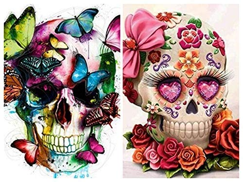 BYAMD 2 Pack Paint by Numbers Kit Skulls 16 x 16 inch Canvas DIY Oil Painting for Kids and Adults Beginner with Brushes and Acrylic Paints