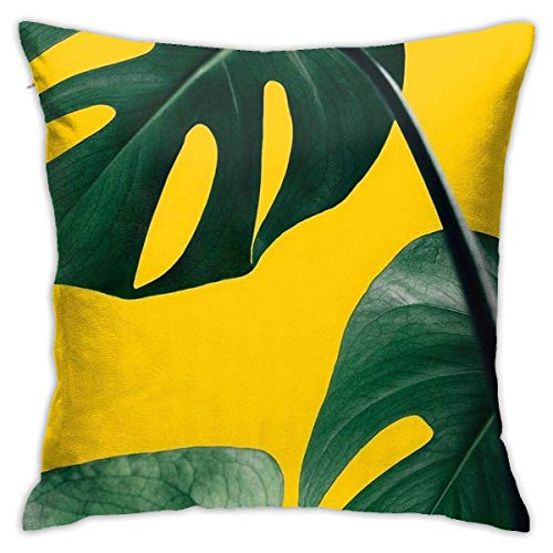 N/Q 45X45cm Throw Pillowcase,Personalized Design Modern Monstera Fresh Plant Leaves Pattern Square Outdoor Pillowcase Sofa Cover Decorative Cushion Cover, Soft, Used for Car Bed Living Room