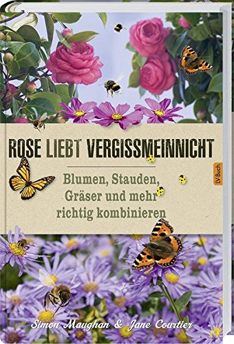 Rose liebt Vergissmeinnicht