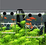 Angelay-Tian Caja de reproducción de Peces de Alta Clara, Caja de criadores de acuarios Doble Guppies incubación Aislamiento de incubador, Suministros para Mascotas de Acuario (acrílico) (Size : L)