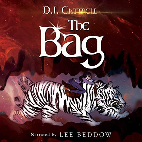 The Bag audiobook cover art