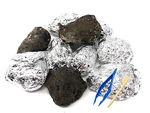 Premium Barn Owl Pellets, Large (Pack of 10) - Free Bone ID Chart, 10 Forceps, 10 Paddle Picks, and Teaching Guide Included!