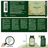 Zoom IMG-1 cordyceps sinensis vegavero 5000 mg