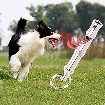 NKYSM pour Animal Domestique Dressage de Chien Obéissance Sifflet à ultrasons Supersonic Son Terrain Silencieux réglable Flûte Puppy