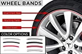 EVANNEX Wheel Bands Kit for Tesla Owners (Silver/Silver)