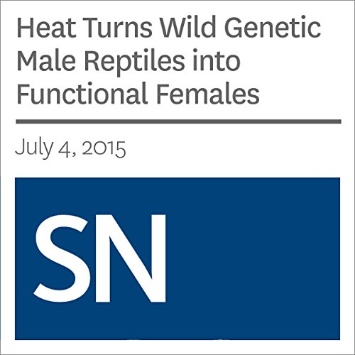 Heat Turns Wild Genetic Male Reptiles into Functional Females audiobook cover art