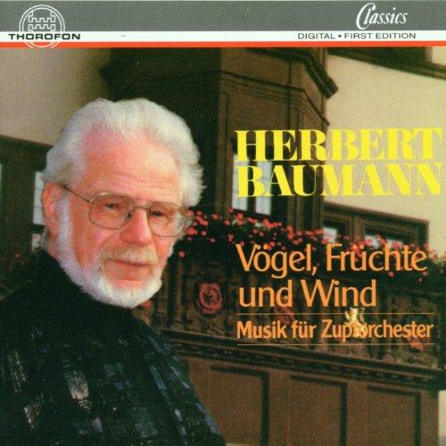 Vögel, Früchte und Wind, Konzert für Gitarre und Zupforchester: III. Andante