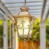 PLLP Bronce Rústico Techo de la Lámpara Pendiente de Aluminio Fundido a E27 de Cristal Colgante Al Aire Libre Impermeable de la Linterna de una Sola Cabeza a Prueba de Lluvia Droplight Unique Garden