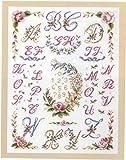 DMC Kit de punto de cruz, diseño floral, corona floral y festones ABC...