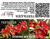 dgdfg Carmesí y Oro fertilizante Chaenomeles speciosa, membrillo chino, membrillo japonés suficiente para 20 litros