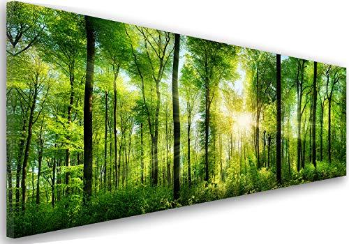 Feeby Frames, Leinwandbild, Bilder, Wand Bild, Wandbilder, Kunstdruck 60x150cm, Wald, BÄUME, Sonne, Natur, GRÜN