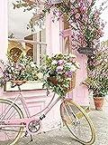 MYQF Pintar por Numeros Adultos Flor Rosa Bicicleta DIY Pintura por Números Pint por Número de Kits for Adultos Mayores Avanzada Niños Joven - 16x20 Inch