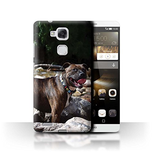 Hülle Für Huawei Ascend Mate7 H&/Eckzahn Rassen Staffordshire Bull Terrier Design Transparent Ultra Dünn Klar Hart Schutz Handyhülle Case