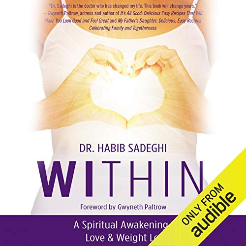 Within Audiobook By Dr. Habib Sadeghi cover art
