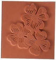 深い赤しがみつくスタンプ ハナミズキの花