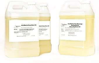 AeroMarine Rock and Pebble Paving Epoxy Resin Kit 3 gallons