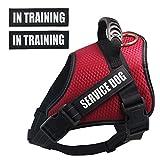 Dihapet Dog Harness, Service Dog Vest,Breathable Working Dog Harness...
