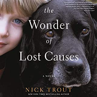 The Wonder of Lost Causes audiobook cover art
