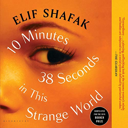 10 Minutes 38 Seconds in This Strange World audiobook cover art