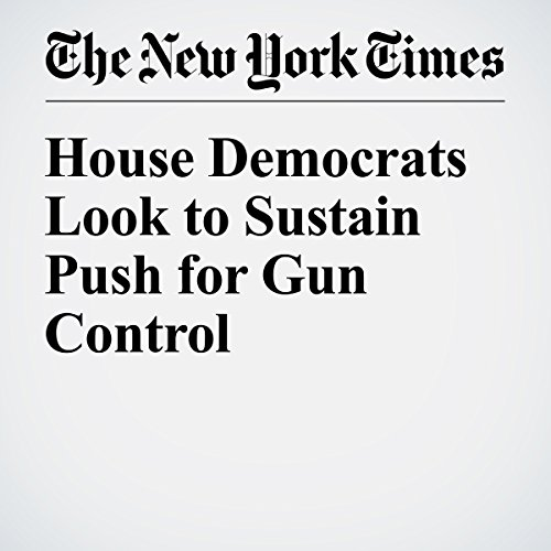 House Democrats Look to Sustain Push for Gun Control cover art