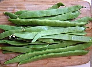 Romano Italian Pole Bean - 50 Seeds - Distinctive, Full Flavor/Very Heavy Yields by Hirts: Seed; Bean