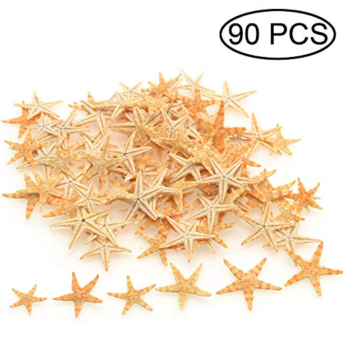 TIHOOD 0.4'-1.2' Small Starfish Star Sea Shell Beach Crafts Decor (Yellow)