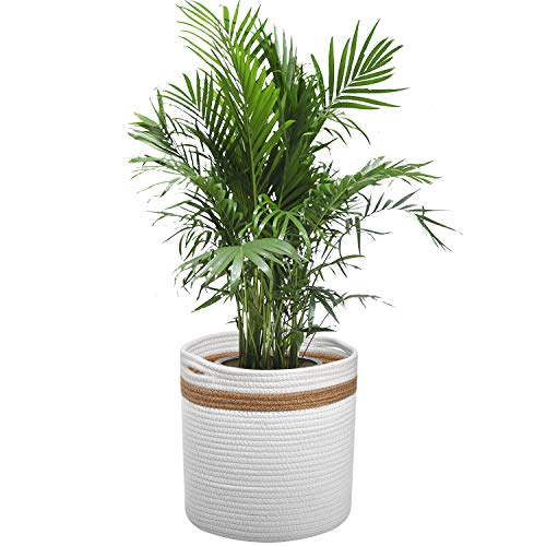 Katoenen Touw Plant Mand voor 10