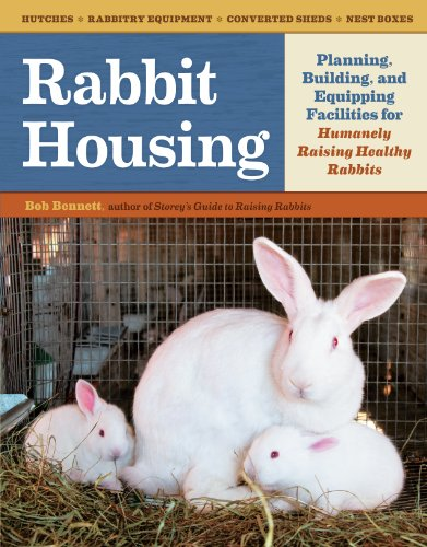 Build Rabbit Hutch
