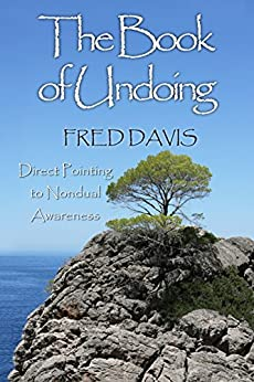 The Book of Undoing by [Fred Davis]