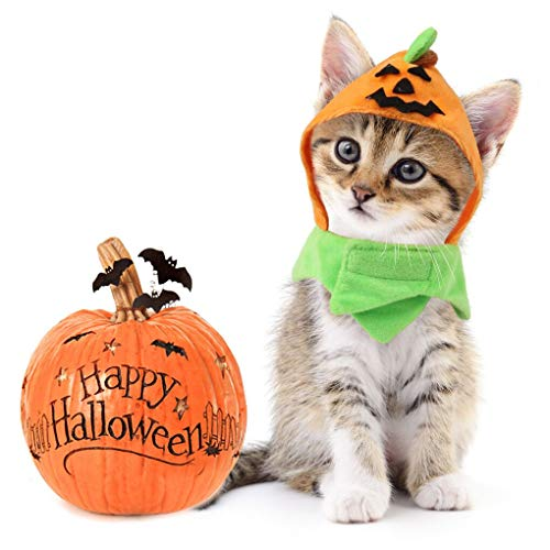 Idepet Cat Halloween Costumes Cat Pumpkin Hat Adjustable Hat for Party Decoration Small Dog Pet Cat...