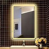 GJX Miroir Cosmétique Miroir grossissant 31 * 24 Pouces LED Lighted Salle de Bains, étanche IP65, Montage Mural Lighted Vanity Salle de Bains Salle de Bain Miroir télescopique (Color : Warm Light)