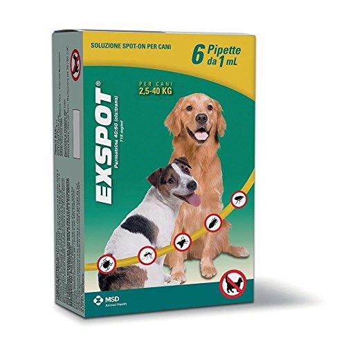 EXSPOT ANTIPARASSITARIO per Cani da 2,5 kg A 40 kg 6 Pipette ANTIPULCI ANTIZECCHE REPELLE ZANZARE Mosche E PIDOCCHI