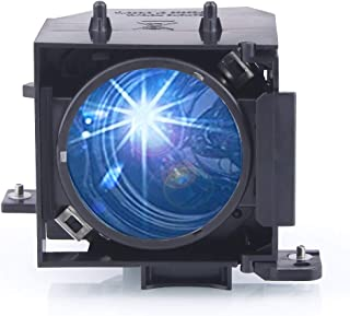 Huaute V13H010L30 / ELPLP30 Replacement Projector Lamp with Housing for Epson EMP-61 EMP-81 EMP-81+ EMP-821 Projectors
