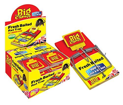 The Big Cheese Fresh International Piège à rat (lot de 6)