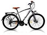 "IBK Bicicletta Trekking 28"" City Bike Uomo Telaio Acciaio Cambio Shimano 21 Speed (Silver)"