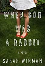 Sarah Winman 'Swhen God Was a Rabbit: A Novel [Hardcover]2011