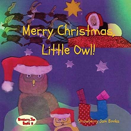 Merry Christmas, Little Owl!